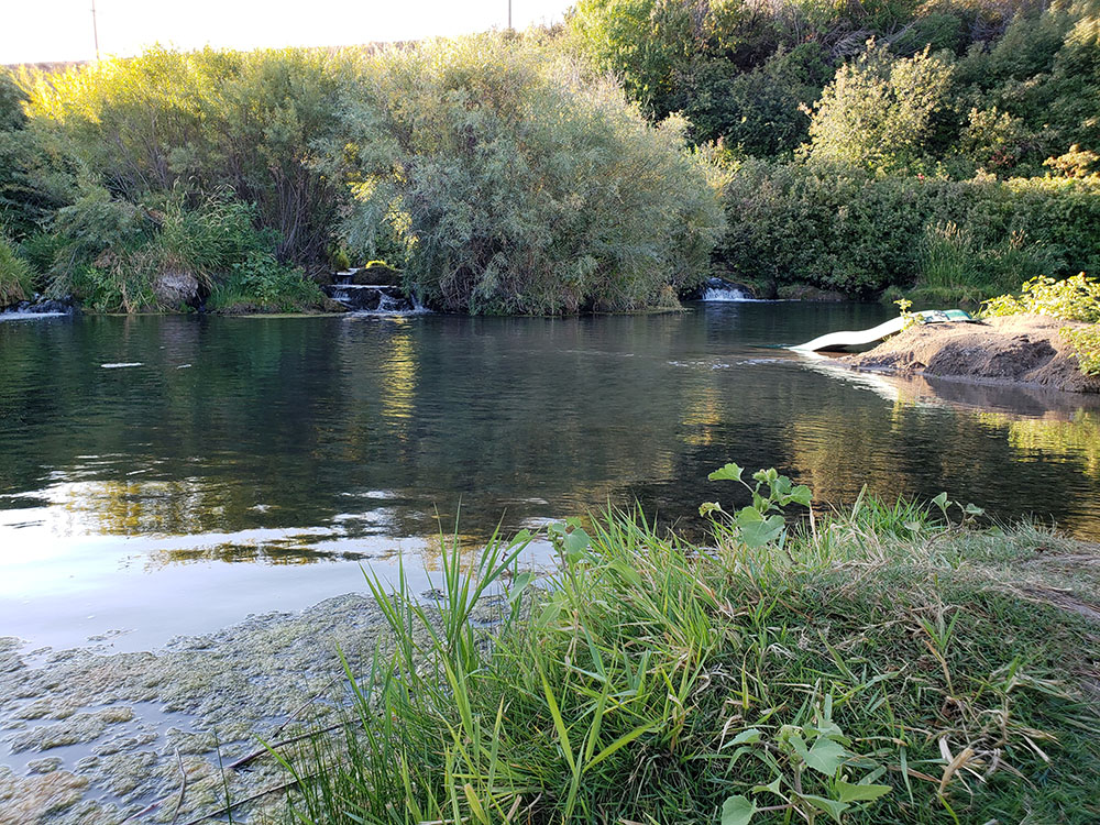Portneuf River Swimming Hole